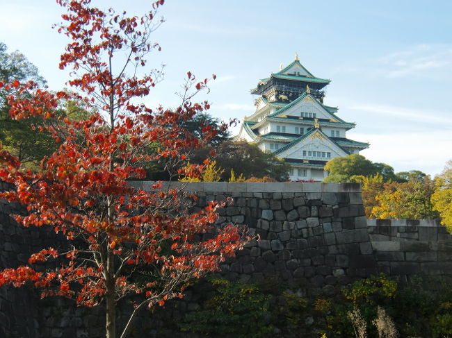 朝心斎橋から地下鉄に乗って大阪城へと。<br />朝早いと言うのに観光客やジョギングをされてる方で賑っている。<br />駅からの歩くのであるが結構な距離だ。<br /><br />ちらほらと赤くなった木々を見ながら天守閣へと向かう。<br />城内で台湾の淡水から来られた女性と会って友は楽しそうに<br />台湾語で喋っていた。<br /><br />環状線の森ノ宮へ向かい大阪駅から元町へと行く事に。<br />目的は中華街へ行きたいと言う次女の旦那のリクエストだ。<br />色々と買い食いをして楽しんだ様子だ。<br /><br />早目に大阪に帰りホテルで休養を取って夜の街に繰り出した。<br />お好み焼きを買って道頓堀川の遊歩道に行って食べた。<br />そして又色々な物を買って食べ夜の街を徘徊した。<br />