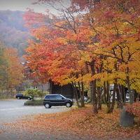 錦繍の星野リゾート 「奥入瀬渓流ホテル」で過ごす日々♪ vol.3 紅葉散策と滝見の白濁温泉へ