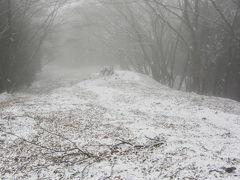 速報!初雪!奥多摩