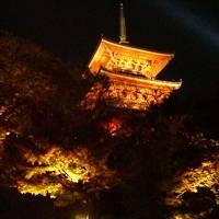 2007年 京都紅葉
