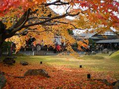 京都で紅葉を楽しみ奈良・大阪をめぐる