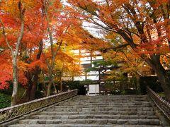 京都を歩く(140) 紅葉に包まれる晩秋の龍安寺