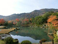 京都一人旅♪2012~紅葉編その1~