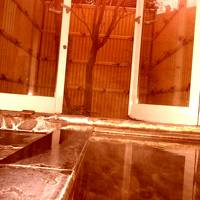 温泉とアールヌーボーに浸る伊豆路
