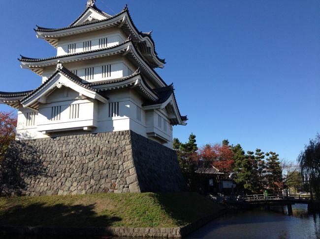 「のぼうの城」を見て、舞台となった埼玉県行田市へ行ってきました。<br /><br />行田市内は、忍城こそわずかに土塁などの跡をとどめるのみですが、当時の地名は各地に残しています。<br />そのほか、石田光成が本陣をとったといわれる丸墓山古墳や「水攻め」で知られる石田堤は、現在もとてもよく残っていました。<br /><br />行田は、「ゼリーフライ」や「フライ」など、埼玉県を代表するB級グルメの街としても県内では知られています。<br />そのほか、さきたま古墳からは国宝「金錯銘鉄剣」などが発見され、行田市埼玉は、埼玉県名発祥の地としても有名です。