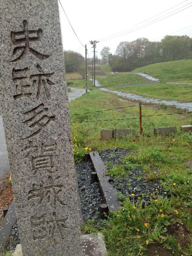 奈良時代の陸奥の国府だった多賀城に行ってきました。<br />雨降りしきる多賀城のウォーキングだったため、十分な写真を撮ることができませんでした。<br /><br />多賀城の周辺は、遺跡の宝庫となっています。<br /><br />広大な面積の多賀城の史跡のほか、JR「国府多賀城」駅の周辺には舘前遺跡、多賀城廃寺跡のほか東北歴史博物館があります。そのほか、少し駅からは離れますが「多賀城市埋蔵文化財調査センター」では、多賀城で発掘された当時の遺物が多数展示されていました。<br /><br />多賀城の政庁跡は、海側より小高い丘陵地帯のもっとも高い位置のあたりにあり、政庁跡からは天気がいいとおそらく周辺がよく見張らせたものだと思います。<br /><br />国府多賀城駅の近くには仮設住宅があり、政庁跡に向かう途中には袋に詰められたがれきが積み重なっておかれたグランドが非常に印象的でした。<br /><br />いまは、歴史ブーム。<br />仙台の青葉城などと合わせ、陸奥国の中心として栄えた多賀城の史跡などをトレッキングしつつ、たくさんの歴史ファンの方に多賀城にも来ていただきたいなと思いました。