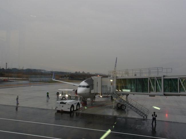 2012年12月13日。晴れて岩国錦帯橋空港が開港。と言っても厳密には前進の岩国飛行場があり、1948年には英国海外航空が就航するなど、定期航空便もありましたが、最初の広島空港(廃港になった広島西飛行場ですね)が出来てからは定期路線が無くなってしまったという経緯があるそうです( wiki参照)マリリン・モンローやヘレンケラーも利用した、由緒ある空港だったのです。広島市内住みの私としては、市内から遠くて不便で名高い現広島空港と、ほぼ等距離に出来た岩国空港はどっちが便利なんだろうという疑問もあり、また全日空が開港記念でお安いチケットを出して下さったので、それに飛びついてしまったという理由もあり、特に予定もないのに東京行きを決断。結局は東京在住の高校時代の友人と、こぢんまりしたクラス会を開く事も出来て、たのしい旅行となりました。