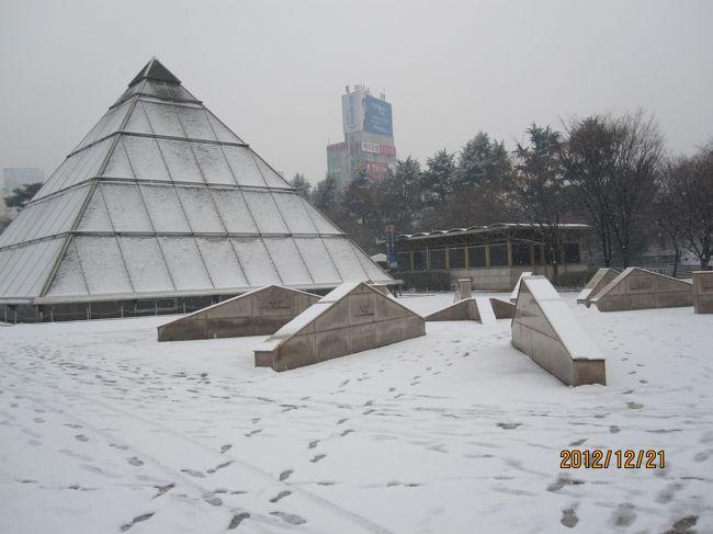 1年ぶりに韓国に行ってきました。<br /><br />ソウルには何回か行ったことがありますが、釜山は1回しか行ったことがないので、今回は釜山に行くことにしました。<br /><br />韓国の大統領選があるということで、それに合わせて行ってきました。<br /><br />韓国は大統領選一色でした。<br /><br />初めて冬に韓国に行ってきまして、とても寒かったです。<br /><br />表紙はテグの写真です。雪が降ってました。