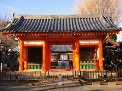 市川を歩く  (1) ―須和田から国分寺に―
