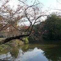 日本の旅 関西を歩く 大阪府貝塚市の水間公園周辺
