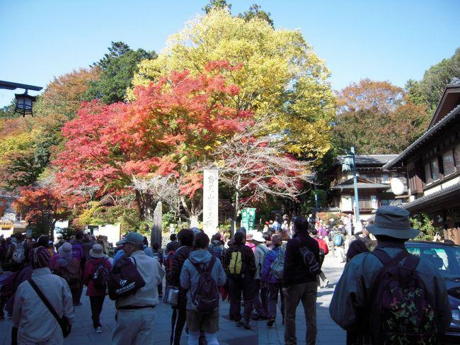 電車で高尾山へ<br />ちょっと紅葉には遅いかな〜って思いながら向かいました。