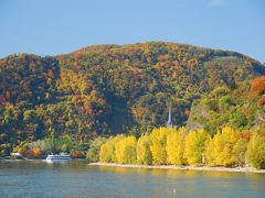 ライン河畔の町々 四季折々の風景