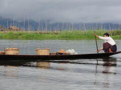 ミャンマーの旅(インレー湖)