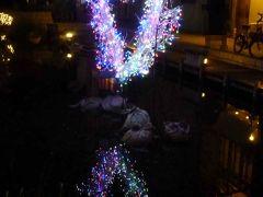 2012年12月 高知市 冬のイルミネーションイベント「高知城・中央公園・はりまや橋」