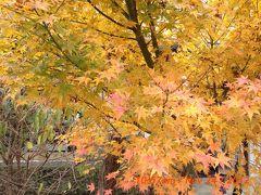 2012大阪と京都の備忘録