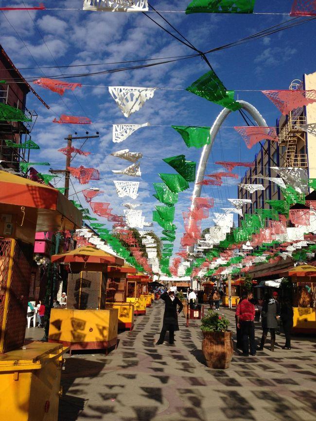 サンディエゴからメキシコ・ティファナへ旅したときの旅行記です。<br />この日はちょうど元旦。<br />今まで生きてきた中で一番お正月っぽくないお正月でした。<br />タイトルの写真だけはちょっとおめでたい感じ?<br /><br />A Happy New Year from Tijuana!!