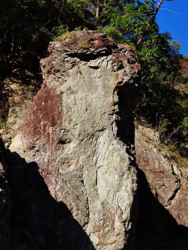 瀞峡(どろきょう)とは、和歌山県・三重県・奈良県を流れる熊野川水系北山川上流にある峡谷。吉野熊野国立公園の一部。<br />上流から、奥瀞、上瀞、下瀞と呼ばれ、下瀞は瀞八丁の名で特に著名で、巨岩、奇岩、断崖が続く圧倒的な渓谷美は、古くから名勝と讃えられている。<br /><br />三重県熊野市 和歌山県東牟婁郡北山村(上流)奈良県十津川村竹筒(下流)<br />和歌山県新宮市(下流)<br />隆起準平原である大台ヶ原周辺から流れを発した川が滝を形成し、侵食作用によって滝つぼが後退して形成された。<br />(フリー百科事典『ウィキペディア(Wikipedia)』より引用)<br /><br />瀞峡については・・<br />https://www.kankomie.or.jp/spot/detail_1694.html<br />http://www.kumakou.co.jp/dorokyou/dk003.html<br /><br />紀伊半島・秘境めぐりと熊野・伊勢参り3日間<br />11月16日(金) 2日目<br /> 伊勢志摩温泉==真珠店==熊野・瀞峡(瀞峡をジェット線で観光。小川口〜瀞峡間)==熊野速玉大社(参拝) ==熊野那智大社(那智大社・那智の滝や青岸渡寺を参拝) ==熊野古道・大門坂(苔むした古の参道を散策) ==勝浦港〜船でホテルへ〜南紀勝浦温泉(泊)    宿泊 : ホテル浦島本館 <br />