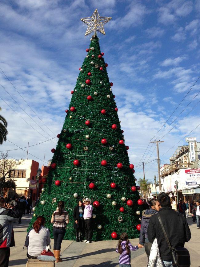 ティファナ旅行記の続きです。<br /><br />ティファナを満喫していざUSAへ。<br /><br />タイトル写真はティファナの裏道に入ったところで見つけたクリスマスツリー。<br />もうお正月なのに。<br />やっぱり外国はお正月よりもクリスマス?