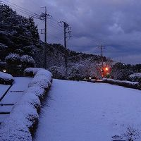 この冬一番の積雪を記録しました。