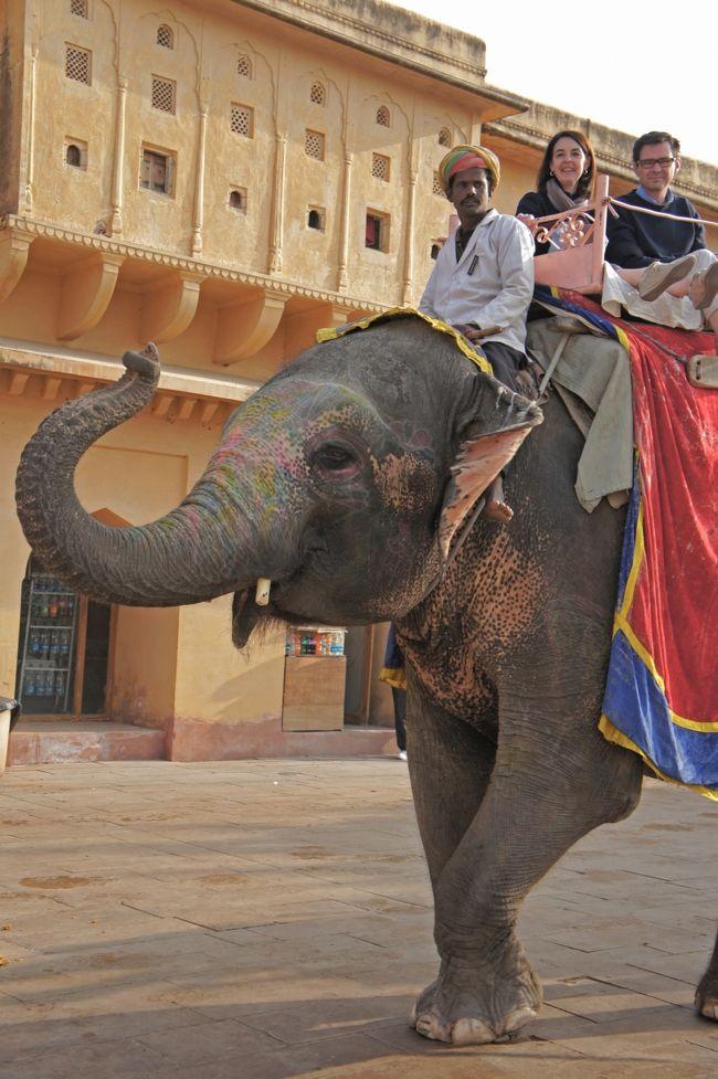 このブログは、<br /><br />インドさんに、ついに呼ばれちゃいました~☆アグラ城とファーテープル・スィークル♪アグラ後編 vol.4<br />http://4travel.jp/traveler/sfsu/album/10740575/<br /><br />の続きです...<br /><br />インド4日目、今日はジャイプールの観光です♪<br />ジャイプールは、別名「ピンクシティ」と呼ばれ、旧市街はサーモンピンクの建物だらけ=☆<br />女子心をくすぐる雑貨や服がいっぱいのジャイプールは、まさに「ラブリー天国」♪<br />観光もモチロンですが、お買い物でも、夫婦揃って久々にはじけました~☆<br /><br />旅の4日目の記録です...