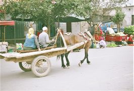 中国・新疆ウイグル自治区 シルクロードをゆく吐魯番・庫車をぶらぶら歩き旅 -1