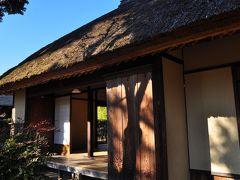 桜で乾杯!(○○で○○) 日本百名城スタンプ 佐倉城址編