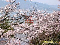 日本の花紀行・桜の名所をたずねてー(3)西日本編