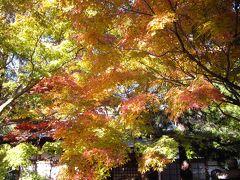 鎌倉・覚園寺へ