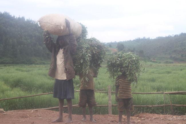 ウガンダから国境を越えて、<br />ルワンダ側の街ガトゥナからキガリを経由してムバレまで移動したときの旅行記。<br /><br />ルワンダの入国もいたってスムーズだった。<br />特に荷物検査もなかった。<br />こんなことならビニール袋捨ててこなければ良かった。<br />何かと便利だからなぁ。<br /><br />ガトゥナからキガリまで乗合タクシーで。15000ルワンダフラン、2時間。<br />キガリでバスに乗り換えてブタレまで。2500ルワンダフラン、2.5時間。<br /><br />ルワンダは別名「千の丘」と呼ばれるくらい平地のない国。<br />こんなにも平坦な道のない国はブータン以来だ。