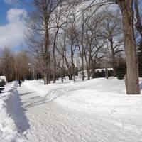 雪まつり前の札幌ひとり旅1☆ 季節外れのぽかぽか陽気とKITA HOTELの幸せな朝食 ~Feb 2013~