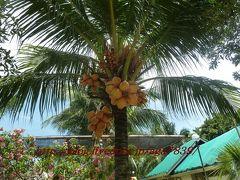 2012年 夏休み 今年4回目の渡比 逝き過ぎだろぉ・・・#18 マニラ・セブ島・ダバオへ逝っちゃいます 『Paradaise Island:パラダイスアイランド』『ParadiseIslandPark&BeachResort』いやっほぉービーチで泳いじゃうぞぅ・・・・・