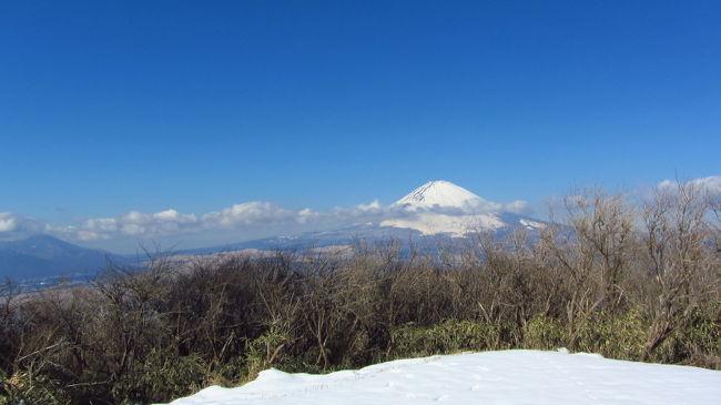 この時期、奥多摩も丹沢も登山道は雪。当然、無雪期の登山靴では登れずアイゼン必携となる。<br />昨年、アイゼンは用意したものの、この雪の残る時期に山に行くことができず、使わず終いになってしまった。<br />今年こそ雪の登山道も攻略したいと思い、まずは比較的優しい山から練習!と意気込んでいたところで風邪でダウン・・・。<br />2月になってようやく準備が整い、箱根外輪山の丸岳を目指した。<br />この丸岳は金時山から尾根伝いに行くことができ、道中の眺望は、富士山、金時山、芦ノ湖、丹沢山系、駿河湾と豪華絢爛。<br />初アイゼンの練習場所としては格好だ。<br /><br />常に富士山を拝みながらの絶景雪山ハイクとなった。
