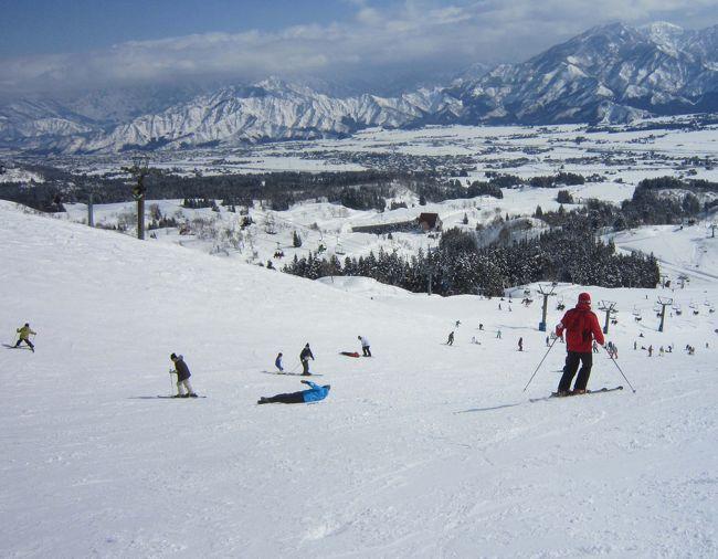 毎年冬にはスキーを楽しみます。JR SKI SKIで新潟県・越後湯沢へ行くか、3連休があれば北海道のニセコビレッジに行くことにしています。今年は2月に3連休があるので本来ならニセコへ行くのですが、夏にゴルフで行ったばかりだったので、昨年同様、越後湯沢でゆっくり楽しむことにしました。<br />JR SKI SKIのツアーは新幹線・ホテル・リフト代がセットになっているお得なパックです。さらにナイトインプランが充実していて、金曜に1泊するプランであれば非常に安く手配できます。今回は金曜発のナイトインで上越国際スキー場・グリーンプラザ上越に2泊することにしました。<br />18:52発の新幹線で越後湯沢に向かいます。連休前とあって東京駅は大混雑。時間に正確な新幹線が天候の影響で少し遅れていました。<br />いい感じでお腹が空いていましたが、越後湯沢に着いたらうどんすきを食べることにしていたので、お弁当には目もくれずお茶で我慢です。<br />20:15に越後湯沢に到着しました。スキーセットはすでにホテルへ送っていたのですが、ちょっとした衣類を持っていたので、余計な荷物はロッカーに入れて、西口にあるお食事処「森瀧」に直行です。<br />雪が少し降っていましたが、道路は消雪パイプからの水で歩きやすくなっていました。<br />西口周辺ではお蕎麦の「しんばし」に行ったことがあります。今回は念願の森瀧でテンションも上がります。<br />口コミで評判のうどんすきと舞茸の天ぷらをいただきました。へぎそばもいいけど、冬はやっぱり鍋ですね。<br />ボリューム満点でとても美味しかったです。<br />21:30にお店を出て、駅前のセブンイレブンで買い物を済ませて、東口のバスロータリーへ向かいます。22:00発のバスは宿泊者ですぐに満席になりました。<br />ホテルに着くとチェックインを済ませて、部屋に向かいます。スキーの受け取りは面倒だったので、明日の朝に後回しです。<br />翌朝、ゆっくりめの朝食を済ませた後、スキー道具をピックアップしてロッカーにしまいました。それから温泉です。朝の10時前後は誰もいなくていいんですよね。樺野沢温泉はお湯がやわらかくて気持ちがいいです。<br />部屋にもどって、スキーの準備を済ませ、いざゲレンデへ。<br />9日(土)はあいにくの天気です。お気に入りのコースまで行くのですが、リフトに乗っている時間が長くてすぐに寒くなりました。それでも何回か滑っていると温かくなりました。<br />おしるこ茶屋で遅めのランチをとってからゆっくりホテルに戻ります。<br />再度温泉に浸かって汗を流してから、リラクゼーション・スパで夫婦並んでの1時間のマッサージ。気持ちよかった〜。<br />夕食はラ・セゾンを予約しました。ここだけは追加料金になるそうです。<br />洋食のみで、パスタ、フライもの、サラダ、牛肉のしゃぶしゃぶ(デモンストレーション)、タイ風カレー、スープ3種類などがあり、わりと充実していました。中でもデザートがとても良かったです。ケーキ、フルーツはもちろん、特別にチョコレートファウンテンがあり、バナナやイチゴやマシュマロを串に刺してから流れるチョコにディップしていただきました。チョコの甘さがフルーツに合っていて美味しかったです。<br /><br />最終日は快晴です。前日同様、ゆっくり朝を済ませて、11時のチェックアウトまで部屋でまったりしました。<br />フロントで精算を済ませてから、荷物をクロークに預けてゲレンデへ向かいます。<br />日差しが強く、昨日とは違ってリフトに乗っていても暑いです。今日は新たに開拓したコースでたっぷりスキーを楽しみました。2時になりホテルに戻ると急に天候が変わって雪が降りはじめました。早めに戻っておいてよかった!<br />道具を片付け、クロネコヤマトで手続きを済ませてから、売店で牛乳と肉まんを食べました。<br />最後にお風呂にゆっくり浸かりました。疲れが取れますね〜。<br />16:00発のバスに乗って越後湯沢駅に戻ります。バスは東口に到着し、そのまま近くの中野屋でへぎそばをいただきました。<br />越後湯沢の駅ナカは改装が完了していて、お食事処が増えています。連休の行楽客でごった返していて、どの店も行列ができていました。<br />雪ん洞の名物「爆弾おにぎり」を買って、新幹線で東京に帰りました。<br />スキーは天候に左右されますね。今回は2泊してよかったです。ゆっくりできました。