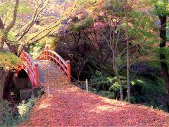 2012紅葉を探してその4 後半 矢祭山と袋田の滝ライトアップ