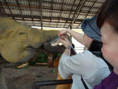 私の大好きな国ナンバーワンに輝いたスリランカ②象さん大好き、みーんな笑顔