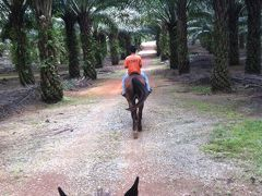 ジョホール・クライで乗馬