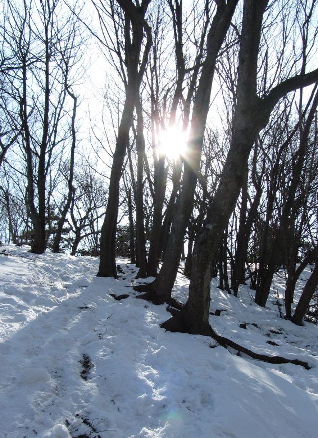 雪道トレーニングその2 仏果山(丹沢)ミニ縦走