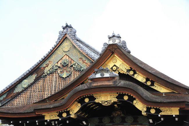 二条城<br /><br />慶長八年(1603年)徳川家康が、京都御所の守護と将軍上洛の際の宿泊所として造営し、三代将軍家光が伏見城の遺構を移すなどして寛永三年(1626年)に完成したものだそうです。<br /><br />慶応三年(1867年)十五代将軍慶喜が諸藩の重役を集め、大政奉還を発表した大広間一の間がある二の丸御殿が素晴らしいです。<br />歴史の重みをずっしりと感じられます。