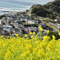 ひと足早い春を求めて南房総・和田浦に訪れてみた