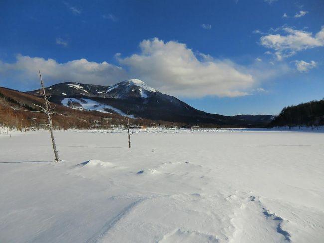 冬の女神湖を見たくて、ホテルアンビエント蓼科に1人でロングステイ(7泊)してきた。冬季限定ながら平日に1人で宿泊すると差額代金が不要になるメンバー用「お一人様プラン」があったので、それを大いに利用する。<br /><br />写真:全面凍結した女神湖<br /><br />私のホームページ『第二の人生を豊かに―ライター舟橋栄二のホームページ―』に旅行記多数あり。<br />http://www.e-funahashi.jp/<br />