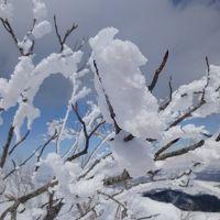 ラッキー藻琴山でスノーボードで滑り降りるのを見れた♪