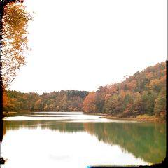 京都一周トレイル 北山西部コース(京見峠~清滝)