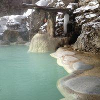 電車とバスの旅 2013 冬の白骨温泉でのんびり 【1】白船荘新宅旅館