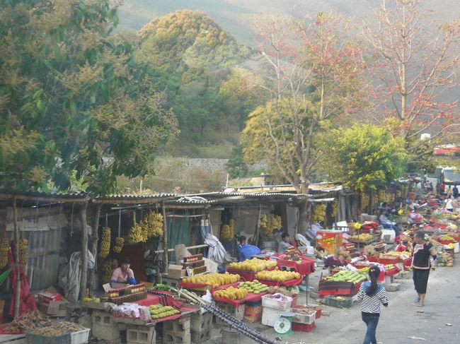 お天気にも恵まれ「羅平の菜の花畑」と「元陽の棚田」を満喫!してきました。<br />カルスト地形の山々と菜の花畑、ハニ族が400年以上かけて作った壮大な棚田の景観、世界的規模のスケールの大きい光景に驚きと感動の連続でした。<br />流石に中国ならではの風景で、とても日本では見られないものでした。<br />ホテルで朝食後、元陽へ向かいます。<br />興義を朝8時30分に出発して元陽に到着したのは18時30分でした。<br />10時間もの長移動でした。<br />写真 移動中に見た道端の市場<br />