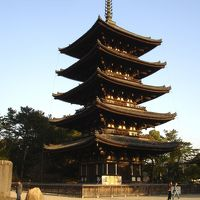 弾丸関西旅行 in 奈良