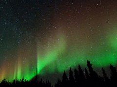 冬のアラスカ旅行 (1)ロッジ滞在、オーロラウォッチング編