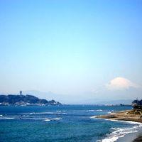 横浜〜湯河原温泉サイクリング旅:しらすと春を追って!