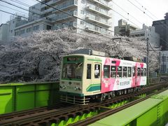 '13 都電荒川線 桜さんぽ(早稲田~王子駅前)