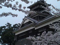 桜をたずねて2013春⑥熊本城