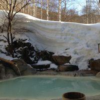 電車とバスの旅 2013 冬の白骨温泉でのんびり 【2】小梨の湯 笹屋